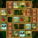Play Bird Cards Match