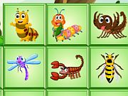 Play Insects Mahjong Deluxe