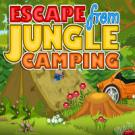 Play Escape from Jungle