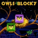Play Owls Blocky