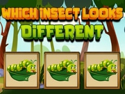 Which Insect Looks Differ…